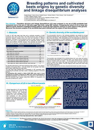 POSTER IIRB 2016 Breeding-patterns-and-cultivated-beets-origins-by-genetic-diversity-and-linkage-disequilibrium-analyses