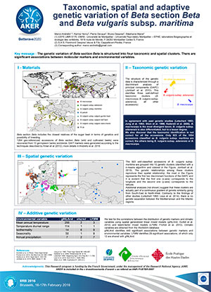 POSTER IIRB 2016 Taxonomic-spatial-and-adaptive-genetic-variation-of-Beta-section-Beta-and-Beta-vulgaris-subsp-maritima